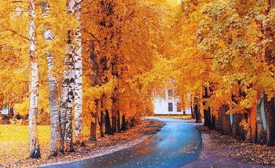 4 Fall Photography Tricks